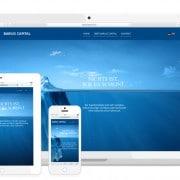 Barius Capital responsive HP